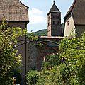 Le jardin médiéval de l'abbaye de murbach