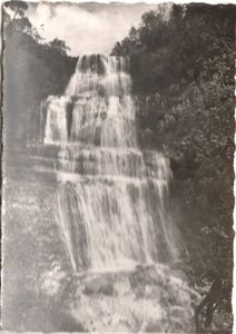 Scan_130625_0050