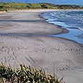 #1 : Nouvelle Zélande 2012