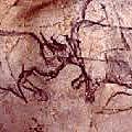 Grotte Chauvet8