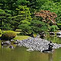 Japanese Garden Seattle 6