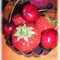 tutti frutti 010_modifié-1