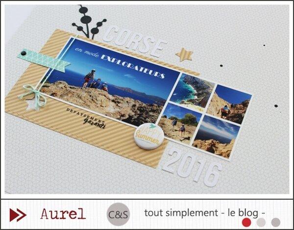 030517 - Corse 2016 - Piocher des éléments #2_blog