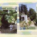 Iles grecques (43) l'arbre millenaire