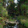 petit ruisseau au fond du campement...