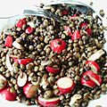 Salade lentilles radis roses
