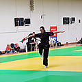 LISE Kung Fu Sabre - Médaille d'Or