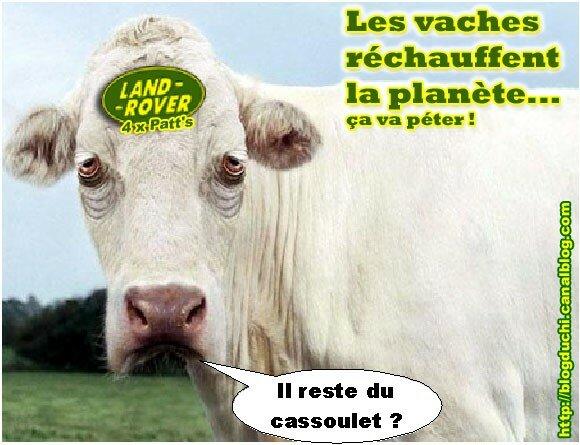 Vache 4x4