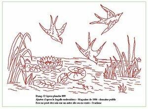 Oiseaux_ingalls099