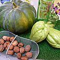 chayottes, noix et courge - www.passionpotager.canalblog.com