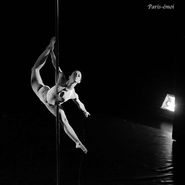pole dance 2012-7651cnA copie