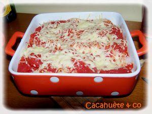 riz___la_tomate