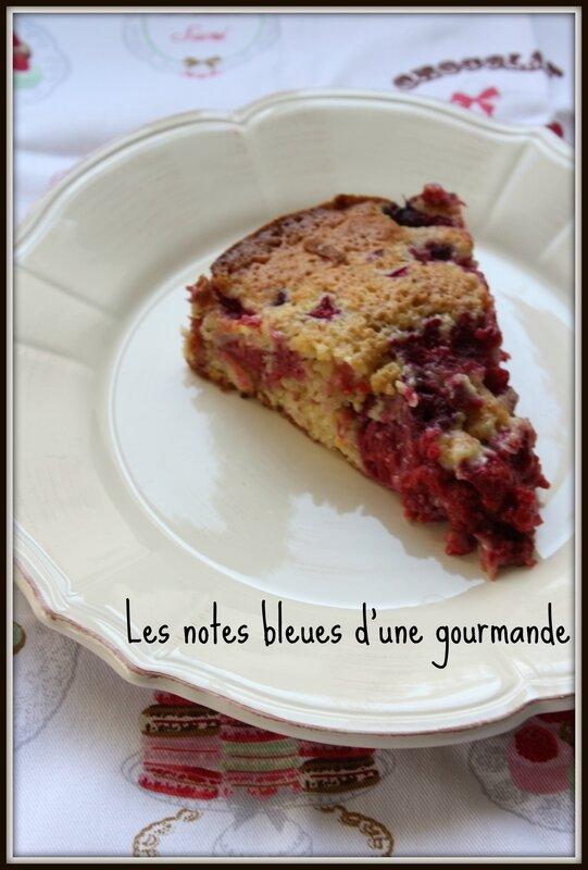 gato_citron_framboise_part_Etiquette___Tranche_de_cake