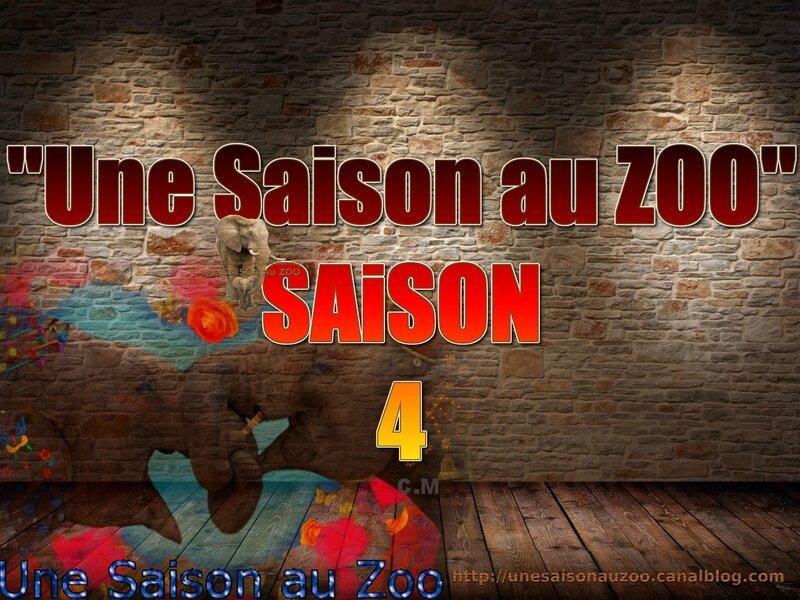 - une SAiSON au ZOO saison 4