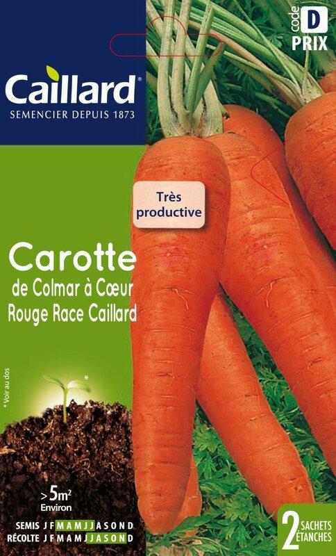 graines carottes de colmar