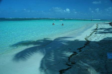 Guadeloupe_139