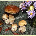Recette de saison rime avec champignon ...