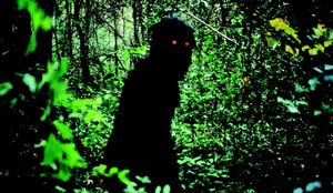 oncle_boonme_apichatpong