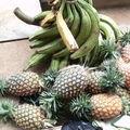 produits agricoles -Cameroun