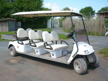 EAGLE voiturette de golf 6 places Rhodes (1)