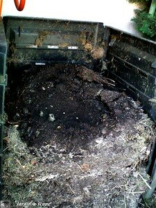 Tas_compost_decompose