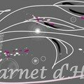 03 - Bannière Carnet humeurs