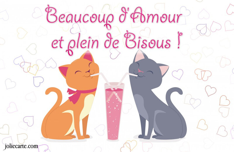 amour-bisous-chat