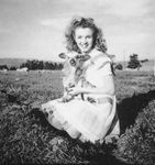 1945_meadow_sitting_sheep_by_dd_021_1