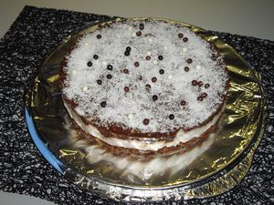 bavarois coco chocolat