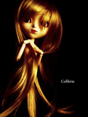 Colibrie_55
