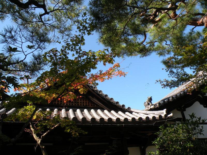 Japon_Kyoto_2009_073