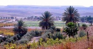 kibbutz_Neot_Smadar_300x158