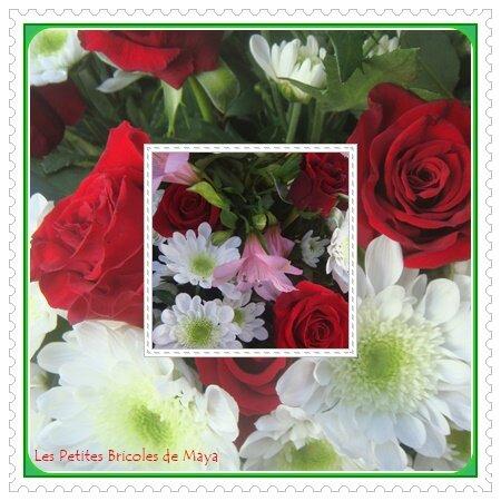 Roses rouges et alvéolés blancs