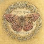 Vintage_butterfly_clipart_by_jinifur