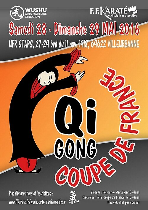 coupe-france_qigong lyon 2016