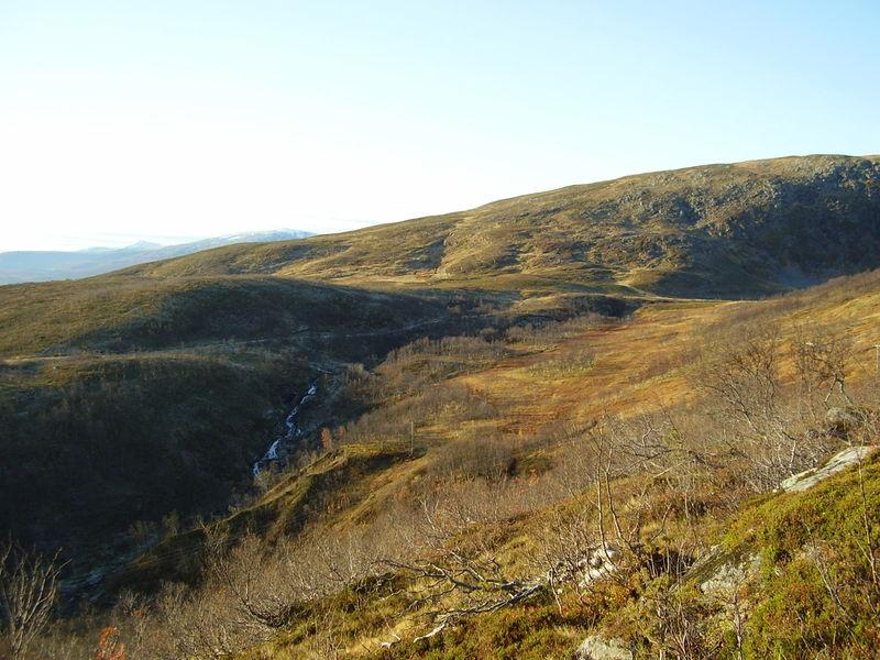 17-10-08 Sortie Montagne et rennes (015)
