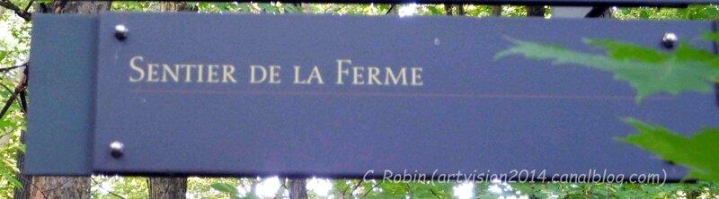 Bois-de-Coulonge-SentierFerme&Fin-03