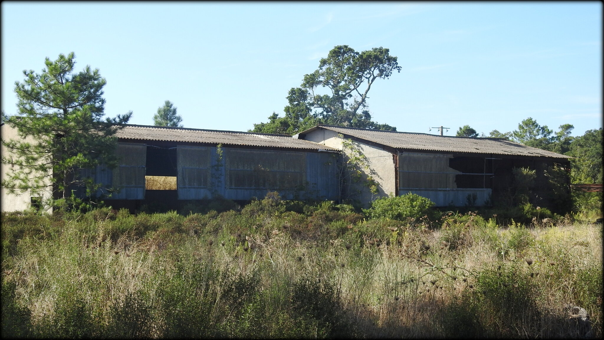 URBANISME_ANARCHIQUE__MENACE_