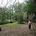 jardin sauvage -Nono (9)