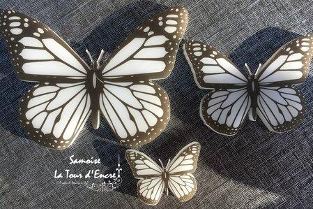 Samoise papillons 3
