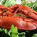 Moi qui adore le homard !