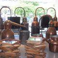 Grasse et l'usine de parfum FRAGONARD