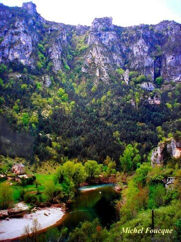 878) Gorges du Tarn