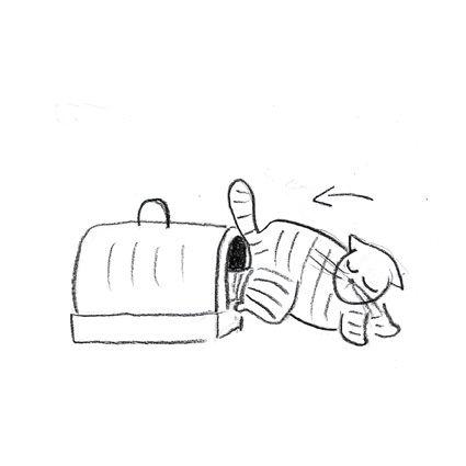 illustr207