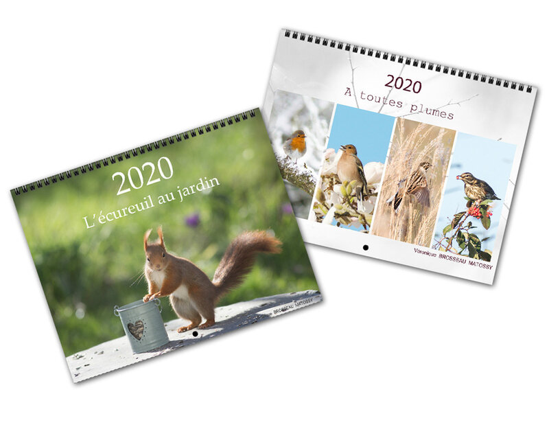 calendriers 2020 nature