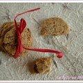 Pour changer des zimtsterne et autres biscuits de noël (1) : biscuits bucoliques aux 3 graines, sans blé