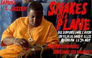 Snakes_Bis