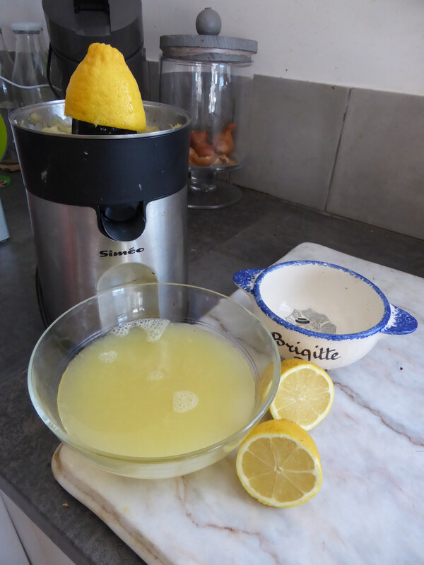 6-citrons (8)