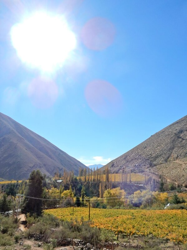 Vue depuis Alcohuaz sur la vallée