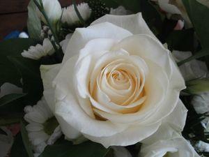 Bouquet00000 (2)